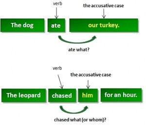 accusative_case