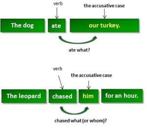 accusative_case